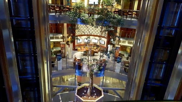 Looking down between the rear elevators.