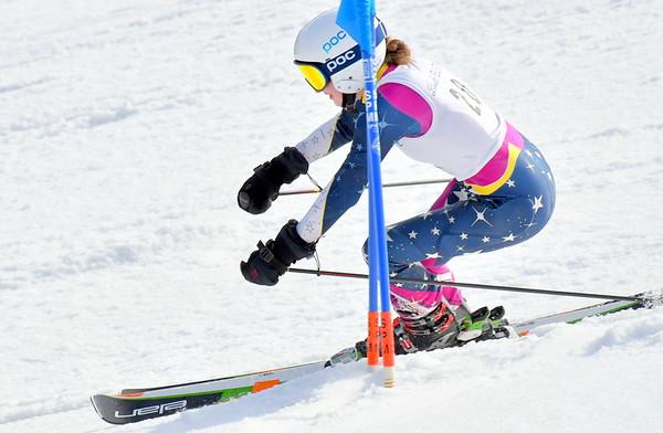 Alpine Ski Districts 020818