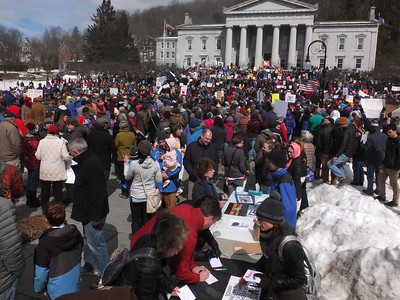 View at the State House March_by Matt Rogers