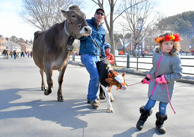 DSC_1062 ,,BEST,,Kent and son Wyatt Underwood with Lillybelle, and Amara Zampini,7, at right with Butterfly,,,all from Vermont Farmstead Cheese Co