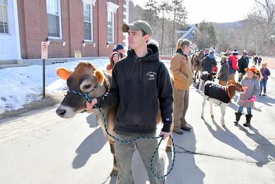 DSC_0954 Matt Deome,,and Bisquick, of Billings Farm