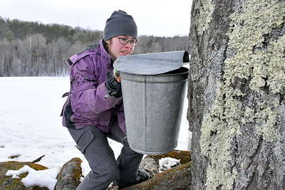 DSC_1744 Amy Wood, friend of family,,helping to gather sap