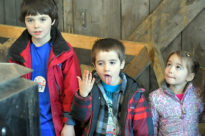 DSC_1379 blake, 8, caleb,,6, and Sadie,4, Sieglinger, of Lebanon,,feel the heat coming from the  wood fired evaporator