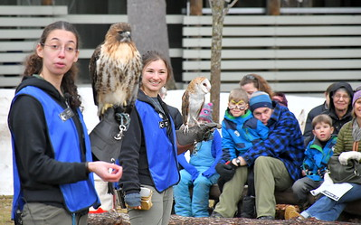 DSC_5371 anna autillo and anna caputo, talk about differences between hawks and owls