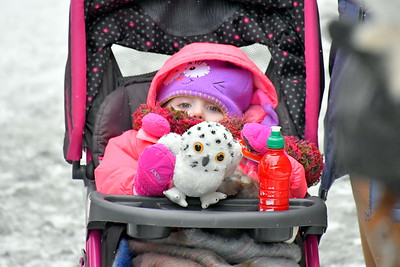 DSC_6338 elena boucher,,3,of St Albans,,with stuffed owls