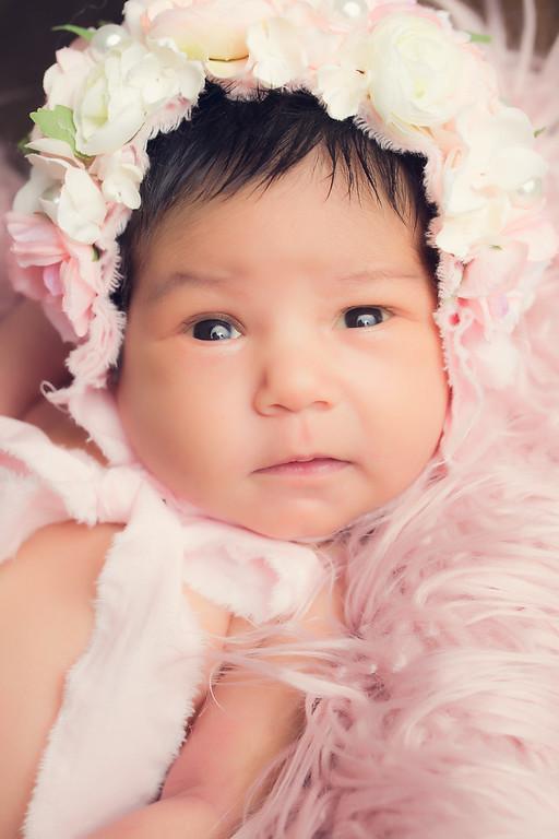 Kaylee Newborn Session