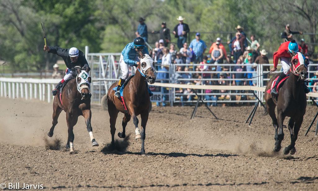 Pari-Mutuel Horse Racing