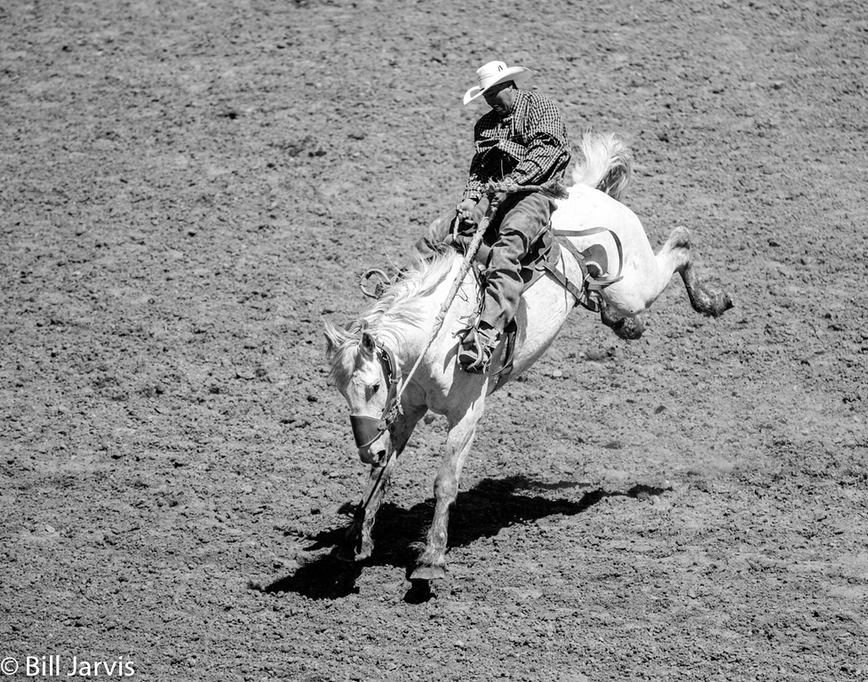 Ranch Bronc Ride