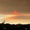 Fire Sun - Napa