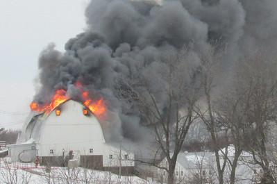 DA104,DJ, Bellevue Barn Blaze jpeg
