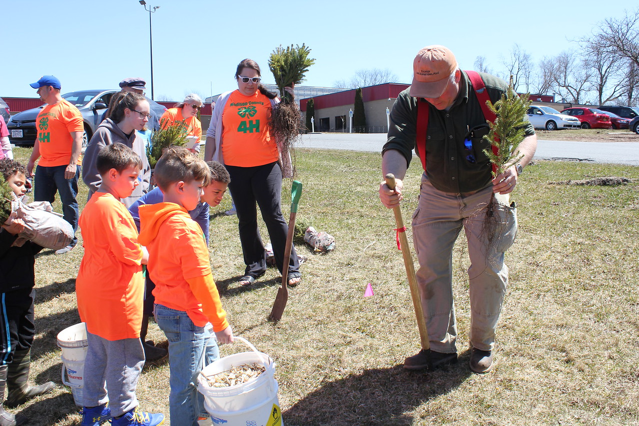 Charles Pritchard - Oneida Daily Dispatch Oneida Rotary Perry Tooker IV, shows the proper method to plant one of the 60 white spruce for Earth Day on Sunday, April 22, 2018.