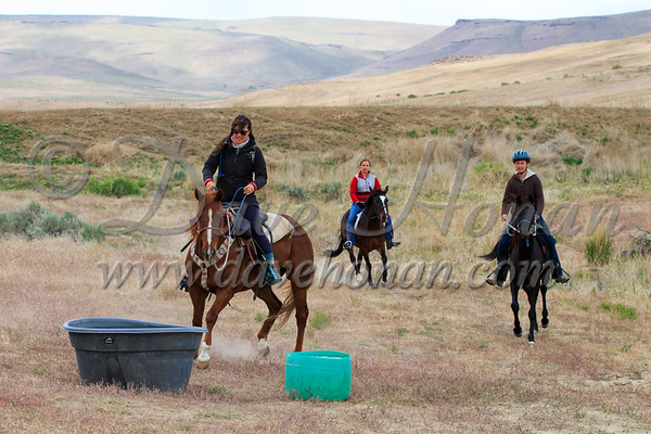 Friday Competitive Trail Ride