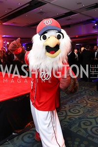 Washington Nationals Mascot Screech. Photo by Tony Powell. 2018 Fight Night. Washington Hilton. November 1, 2018.JPG