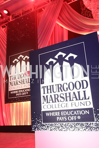 Photo by Tony Powell. 2018 Thurgood Marshall College Fund Gala. Wardman Park. October 29, 2018
