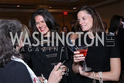 Stephanie Polis, Meg Leahy. Photo by Tony Powell. 2018 Wendt Center for Loss and Healing Gala. Four Seasons. November 15, 2018