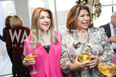 Faye Rokni, Charo Abrams. Photo by Tony Powell. 2018 Colorectal Brunch. Cafe Milano. December 10, 2018