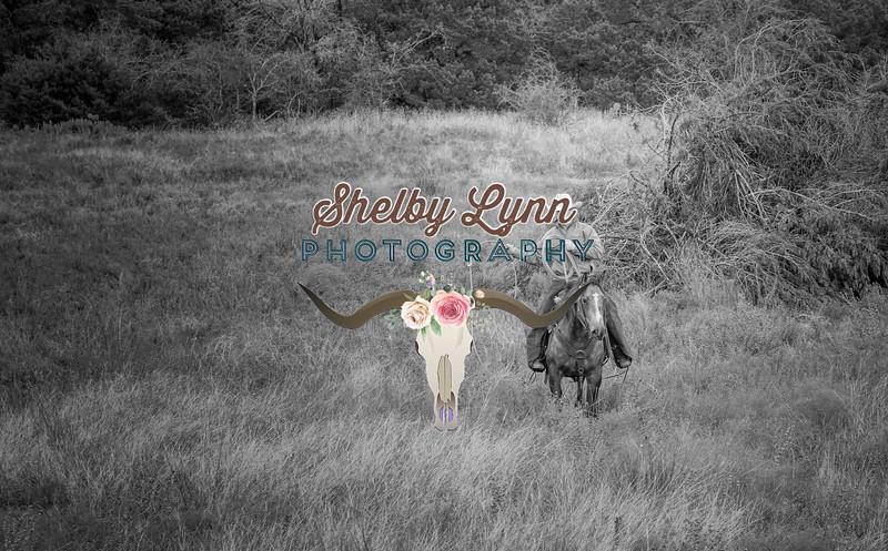 BRIAN DOTY-NOV 10,2018-354