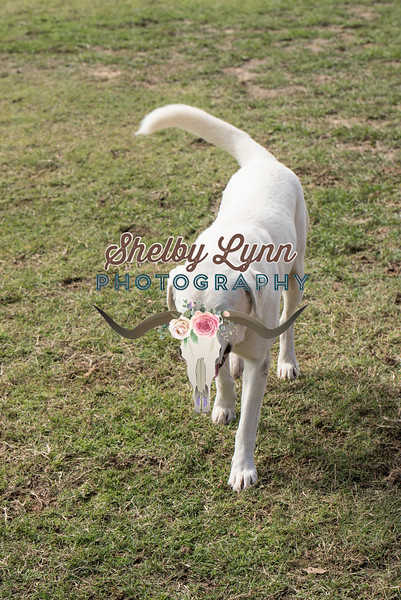 BRIAN DOTY-NOV 10,2018-50