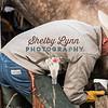BRIAN DOTY-NOV 10,2018-259