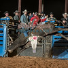 CHANCE LOPEZ-BKBD-BULL RIDING-SA-42