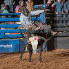 JOHNATHAN BROWN-BKBD-BULL RIDING-SA-71