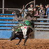 CHANCE STOFA-BKBD-BULL RIDING-SA-83