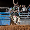 CODY GILBERT-BKBD-BULL RIDING-SA-100