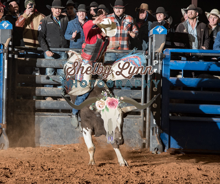 CHANCE LOPEZ-BKBD-BULL RIDING-SA-91