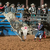 CLINT LOTT-BKBD-BULL RIDING-SA-37