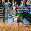 CIMMARON RUCKER-BKBD-BULL RIDING-SA-63
