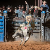 WILL HIGHTOWER-BKBD-BULL RIDING-SA-112