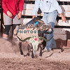 MUTTON BUSTIN-CPRA-UTOPIA-SA-87