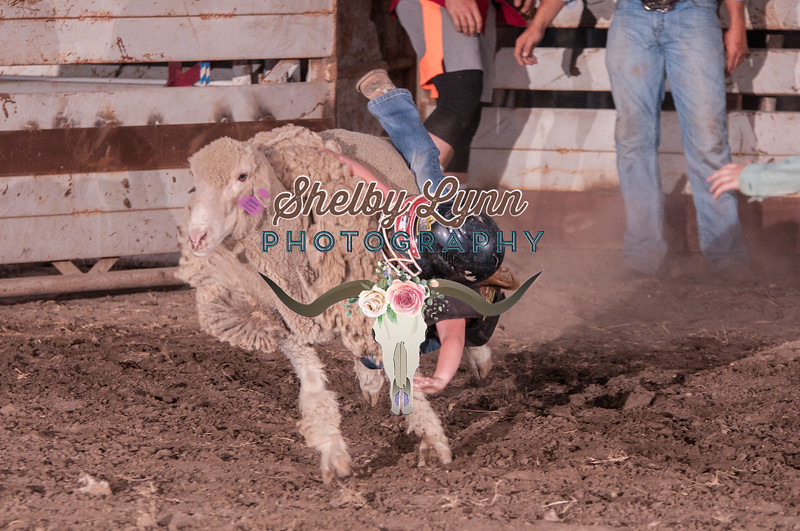 MUTTON BUSTIN-CPRA-UTOPIA-SA-93