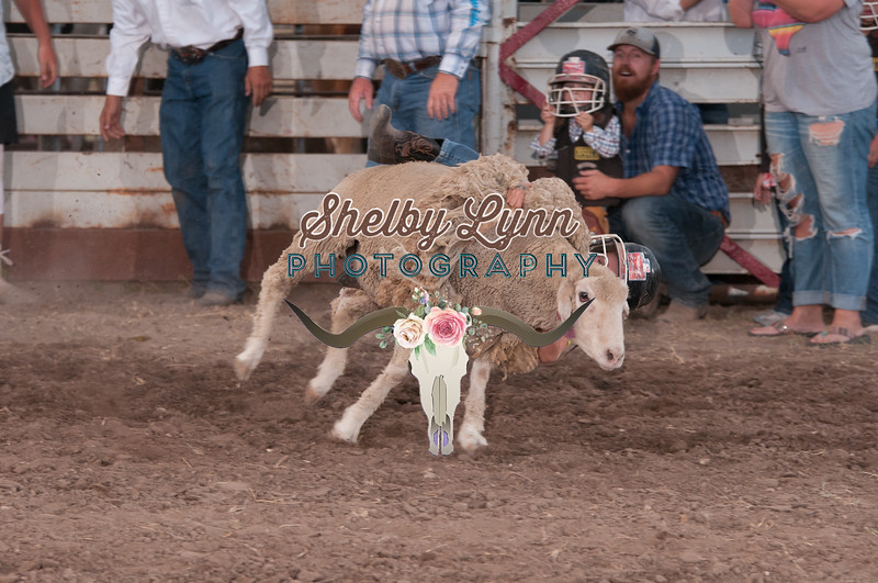MUTTON BUSTIN-CPRA-UTOPIA-FR-29
