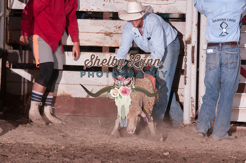 MUTTON BUSTIN-CPRA-UTOPIA-SA-98
