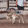 MUTTON BUSTIN-CPRA-UTOPIA-FR-33