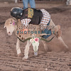 MUTTON BUSTIN-CPRA-UTOPIA-FR-44