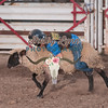 MUTTON BUSTIN-CPRA-UTOPIA-FR-37