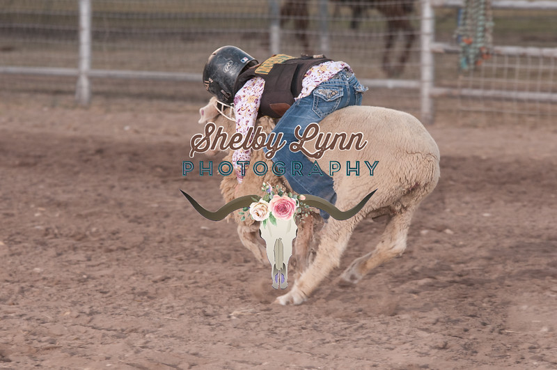 MUTTON BUSTIN-CPRA-UTOPIA-FR-26