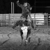 YOUTH RODEO-JCY-WED-51