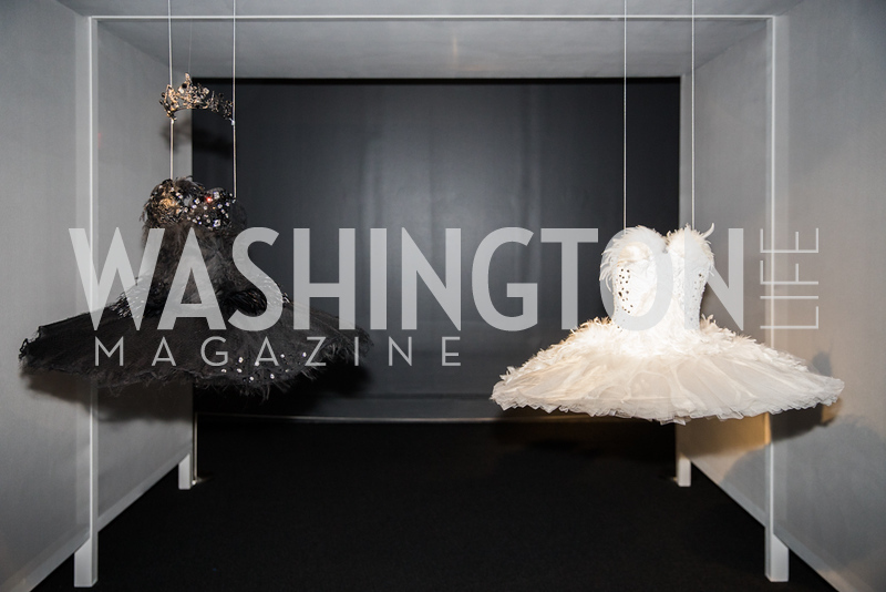 Tutus from Black Swan the movie.  Photo by Bruce Allen. 2018 Rodarte Exhibition Reception