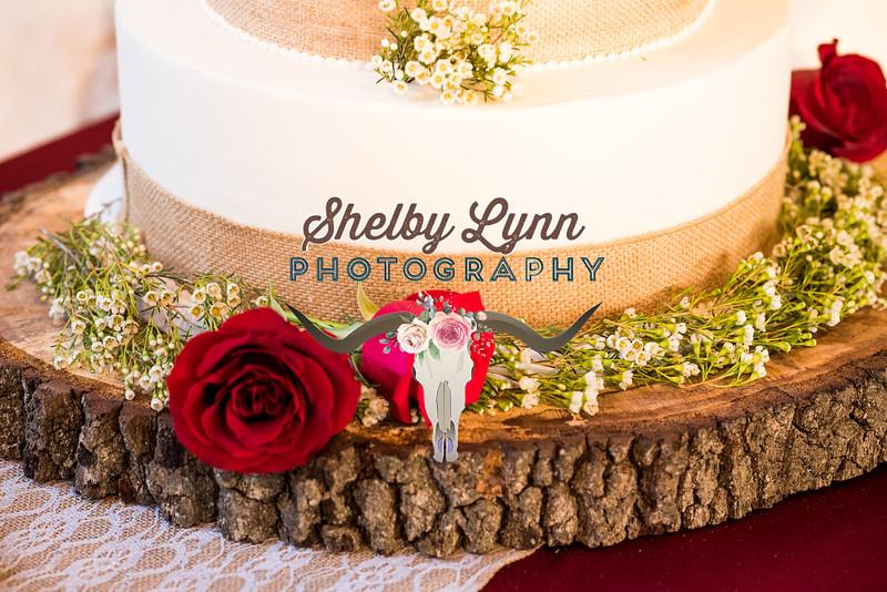 TINKER WEDDING-NOV 3,2018-444