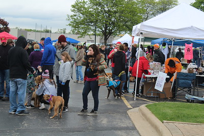 2018 Pet Promenade & Party in the Park