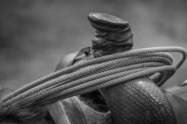 Week 29 - Rope, String, Wire