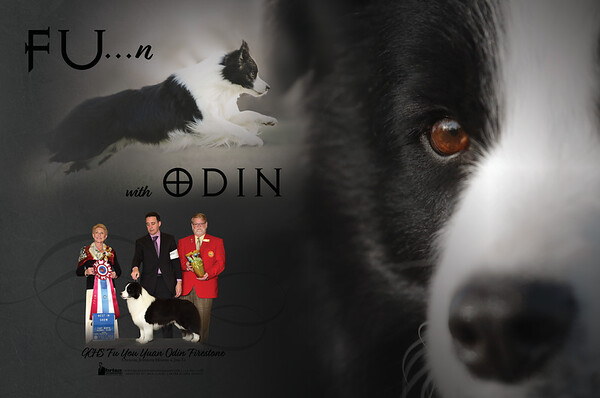 Odin(December)