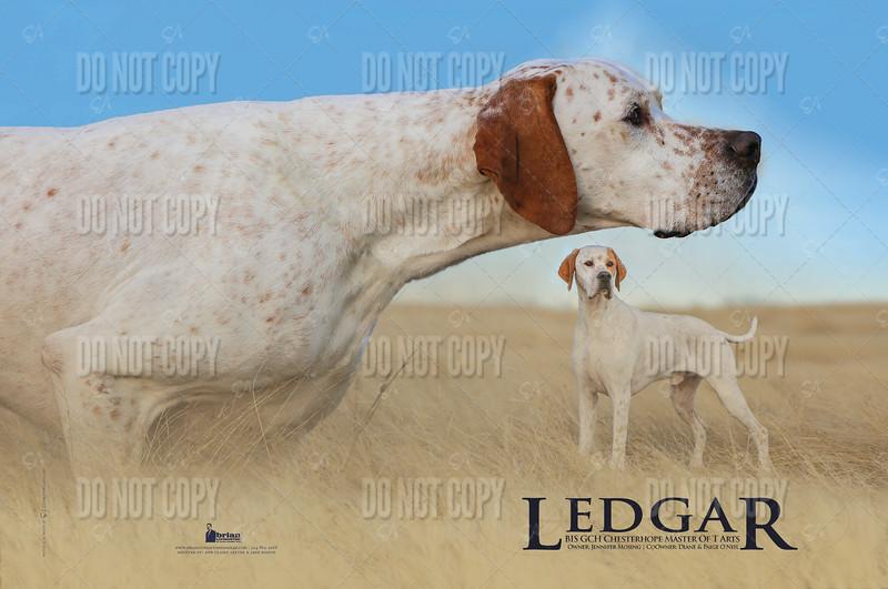 Ledgar(December)a