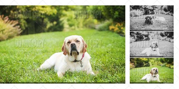 Maggie & Macie Photo Book Proof