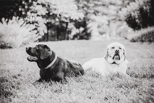 Maggie&Macie021