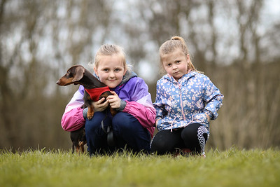 029-Dachshund-Walk-Ben-Unwin-Photography
