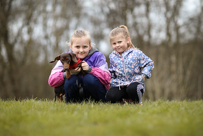 030-Dachshund-Walk-Ben-Unwin-Photography